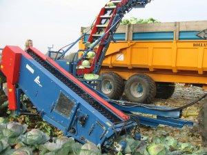 Техника для уборки капусты